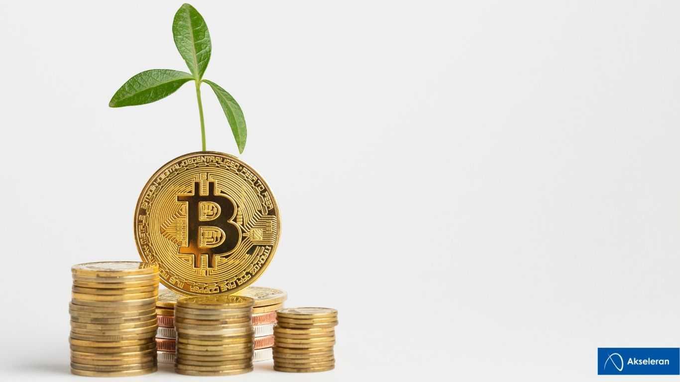 Cara Investasi Bitcoin Agar Mendapatkan Profit