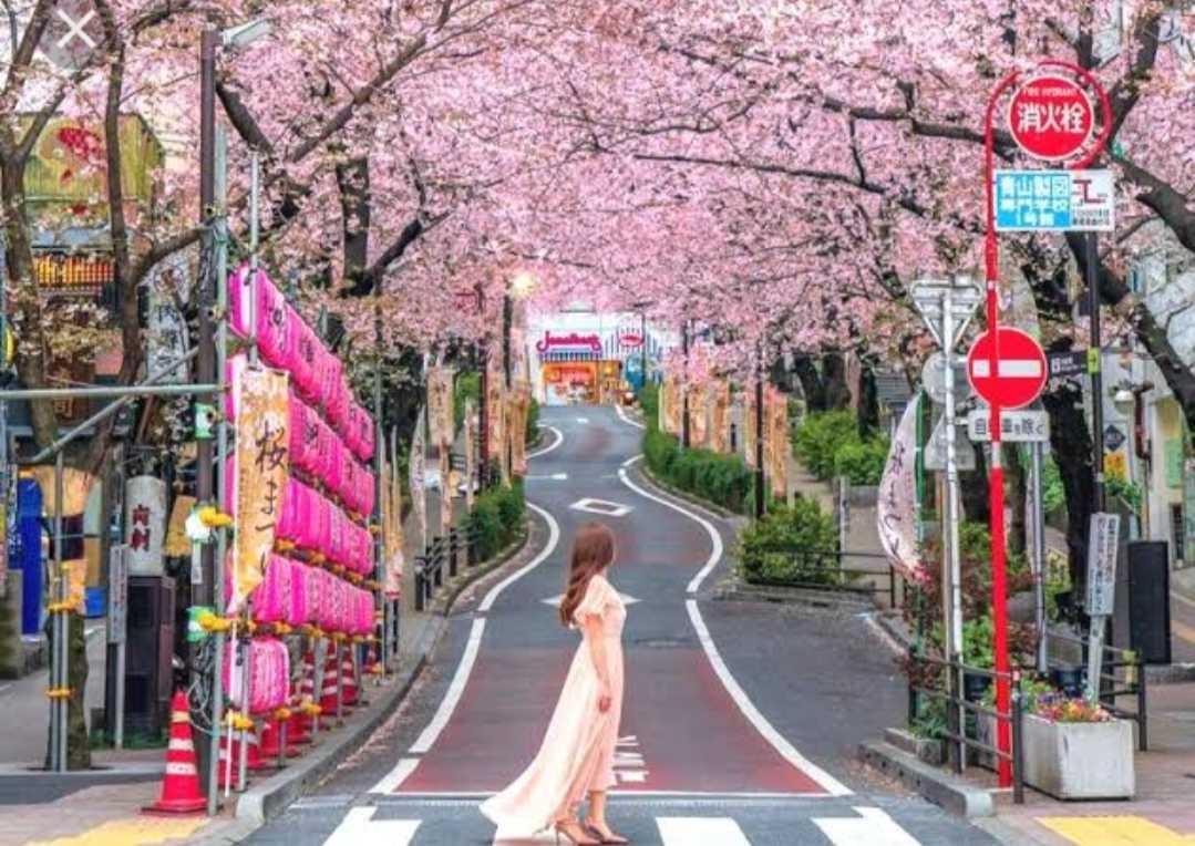 Jepang Perluas Darurat, 70 Persen Wilayah Gawat