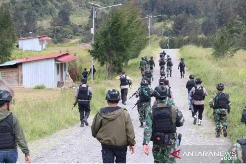 KKB Papua Kembali Tembak Mati Guru di Beoga