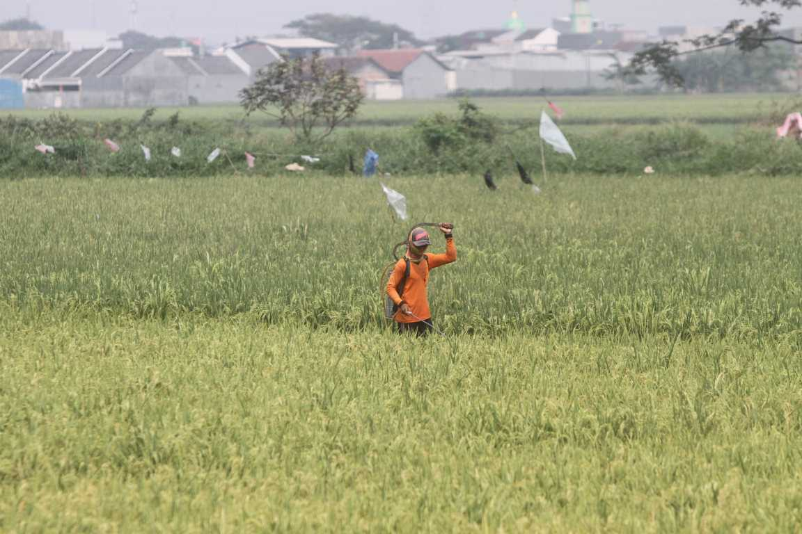 KUR Pertanian