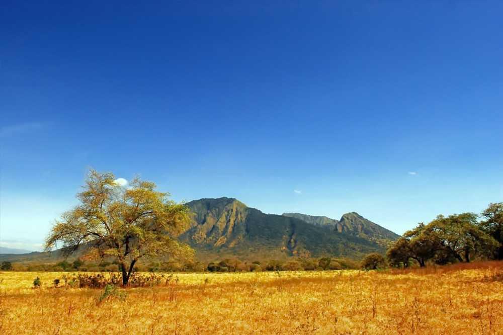 Pesona Taman Nasional Baluran, Rasa Afrika