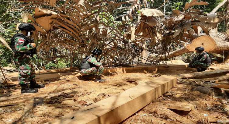 Saat Berpatroli di Hutan, Pasukan Yonif 642 Temukan Tumpukan Kayu, Diduga Hasil Pembalakan Liar