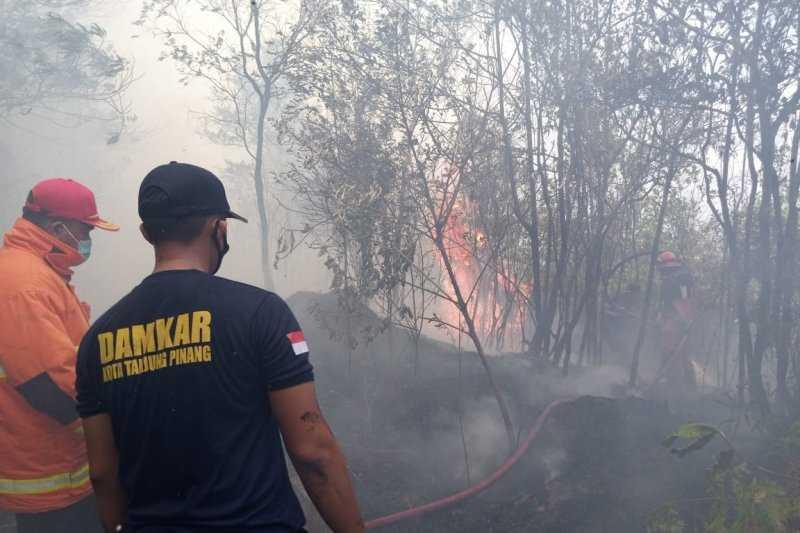 Sebanyak 46 Kasus Kebakaran Terjadi di Tanjungpinang Januari-Februari