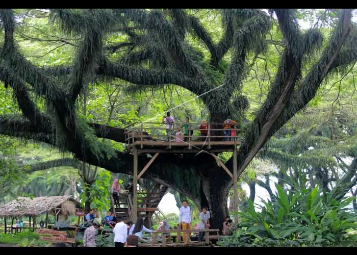 Wisata Lords of the Rings di Jawa Timur